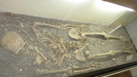 F:\Экскурсия в музей археолог 15.11.2014\IMG_6122.JPG