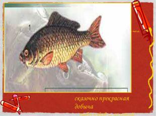 сказочно прекрасная добыча рыболовов – золотой линь
