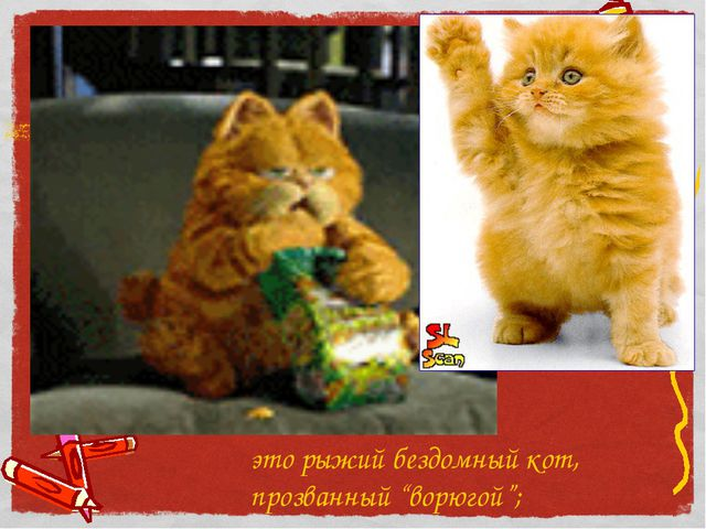 """это рыжий бездомный кот, прозванный """"ворюгой"""";"""