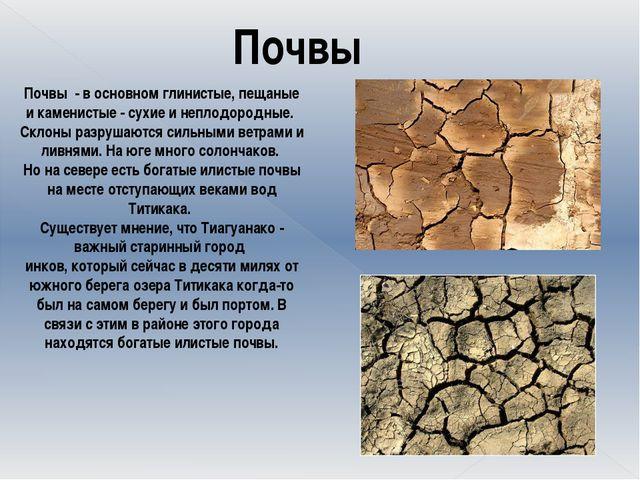Почвы Почвы - в основном глинистые, пещаные и каменистые - сухие и неплодор...