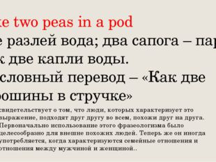 Like two peas in a pod Не разлей вода; два сапога – пара; как две капли воды.