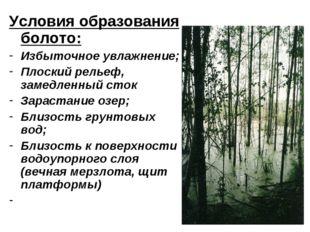 Условия образования болото: Избыточное увлажнение; Плоский рельеф, замедленны