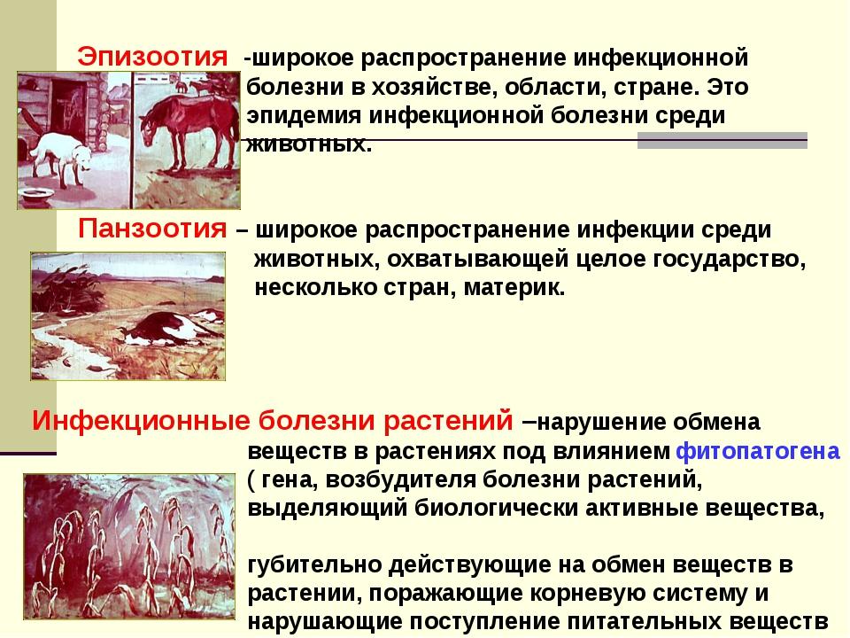 Эпизоотия -широкое распространение инфекционной болезни в хозяйстве, области,...