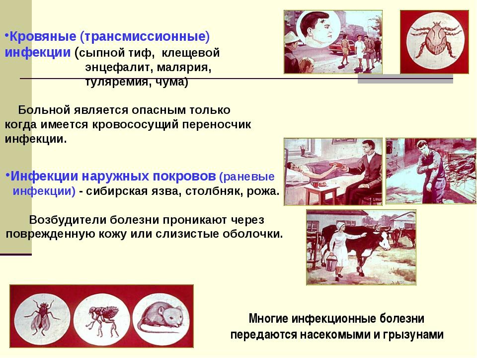 Кровяные (трансмиссионные) инфекции (сыпной тиф, клещевой энцефалит, малярия,...