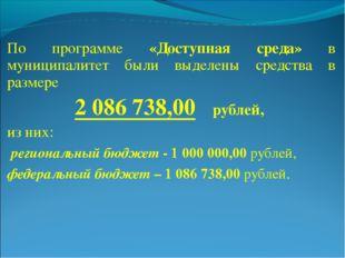 По программе «Доступная среда» в муниципалитет были выделены средства в разме