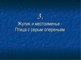 3. Жулик и местоименье - Птица с серым опереньем