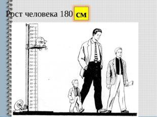 Рост человека 180 см