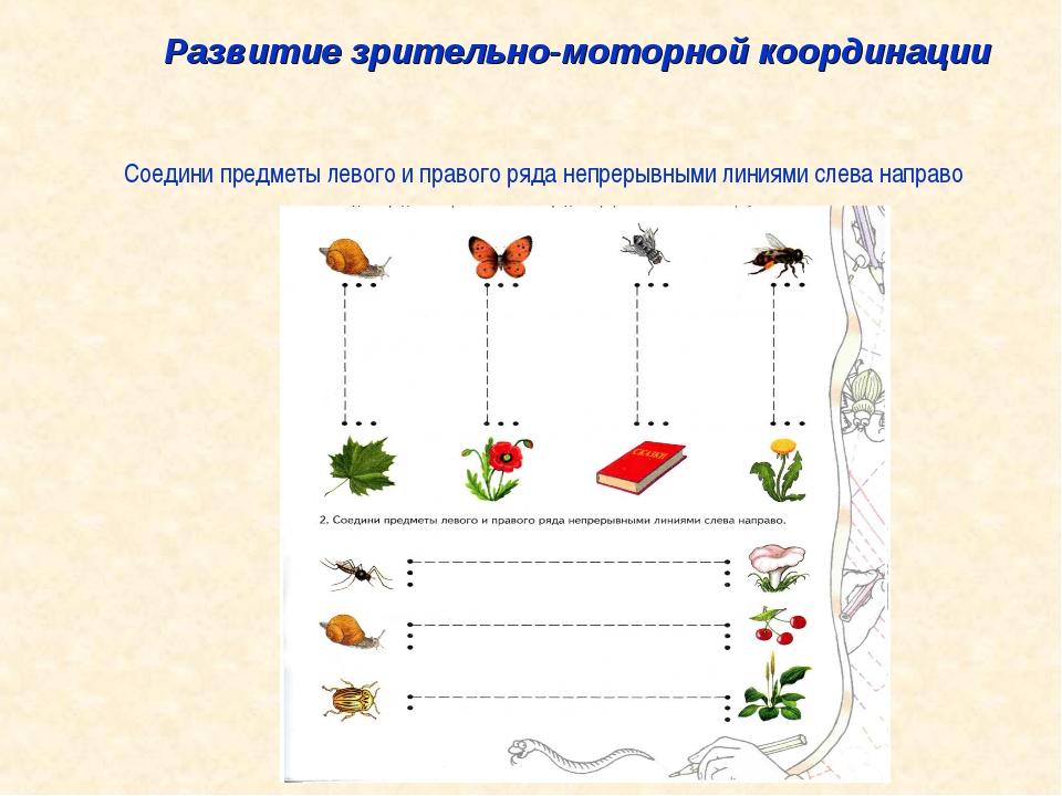 Развитие зрительно-моторной координации Соедини предметы левого и правого ряд...