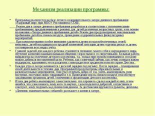 Механизм реализации программы: Программа реализуется на базе летнего оздорови