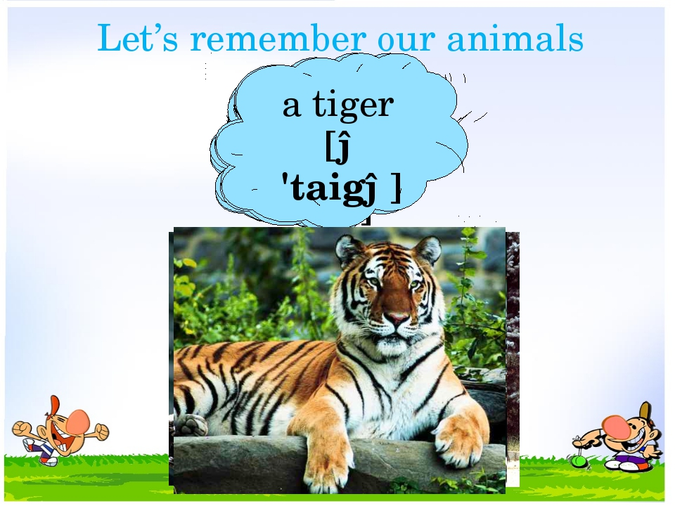 Let's remember our animals a racoon [ə rə'ku:n] a horse [ə 'hɔ:s] a rabbit [ə...