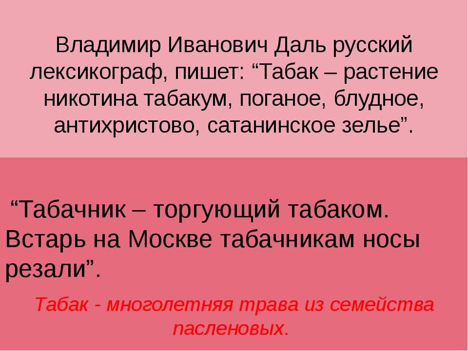 """Владимир Иванович Даль русский лексикограф, пишет: """"Табак – растение никотина..."""