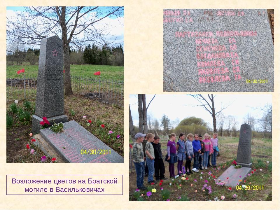Возложение цветов на Братской могиле в Васильковичах
