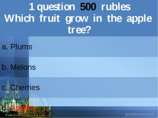 1question500rubles Which fruit growin the apple tree? a. Plums b.Melons c.Che