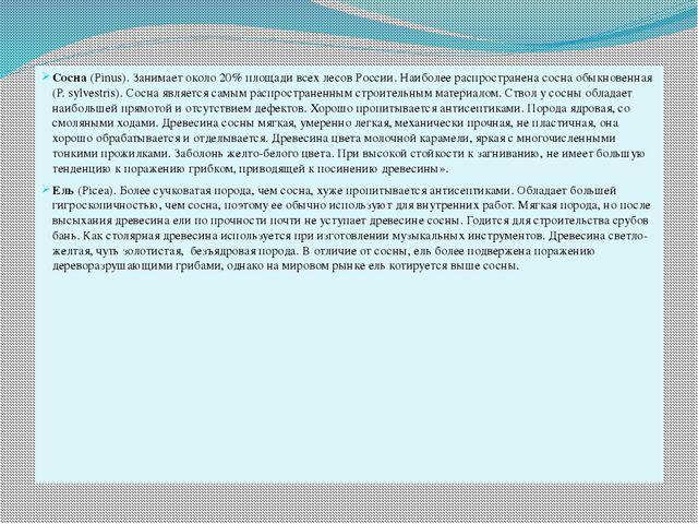 Сосна(Pinus). Занимает около 20% площади всех лесов России. Наиболее распрос...