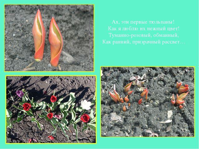 Ах, эти первые тюльпаны! Как я люблю их нежный цвет! Туманно-розовый, обманны...