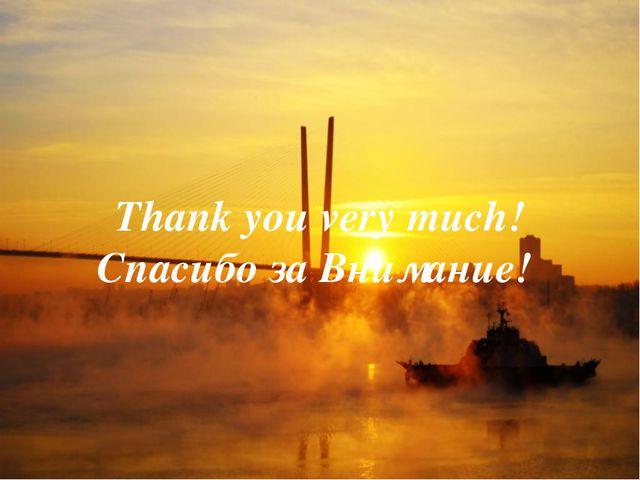 Thank you very much! Спасибо за Внимание!