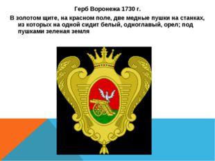 Герб Воронежа 1730 г. В золотом щите, на красном поле, две медные пушки на ст