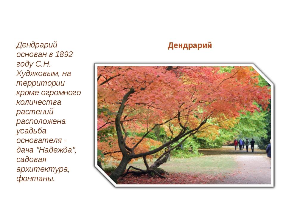 Дендрарий Дендрарий основан в 1892 году С.Н. Худяковым, на территории кроме о...