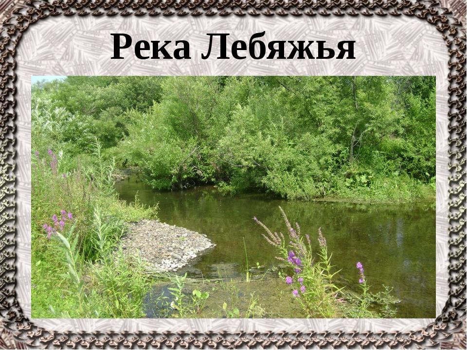 Река Лебяжья