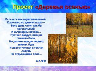 Проект «Деревья осенью» Есть в осени первоначальной Короткая, но дивная пора