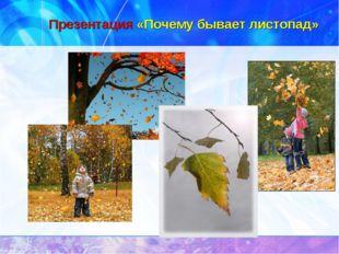 Презентация «Почему бывает листопад»