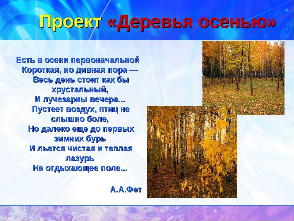 Проект «Деревья осенью» Есть в осени первоначальной Короткая, но дивная пора...