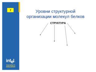Уровни структурной организации молекул белков 7 СТРУКТУРА