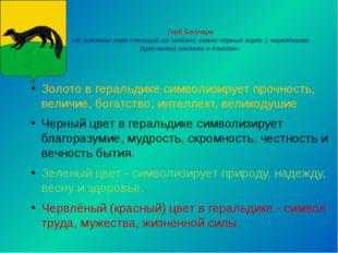 Герб Богучара «В золотом поле стоящий на зелёной земле чёрный хорёк с червлён
