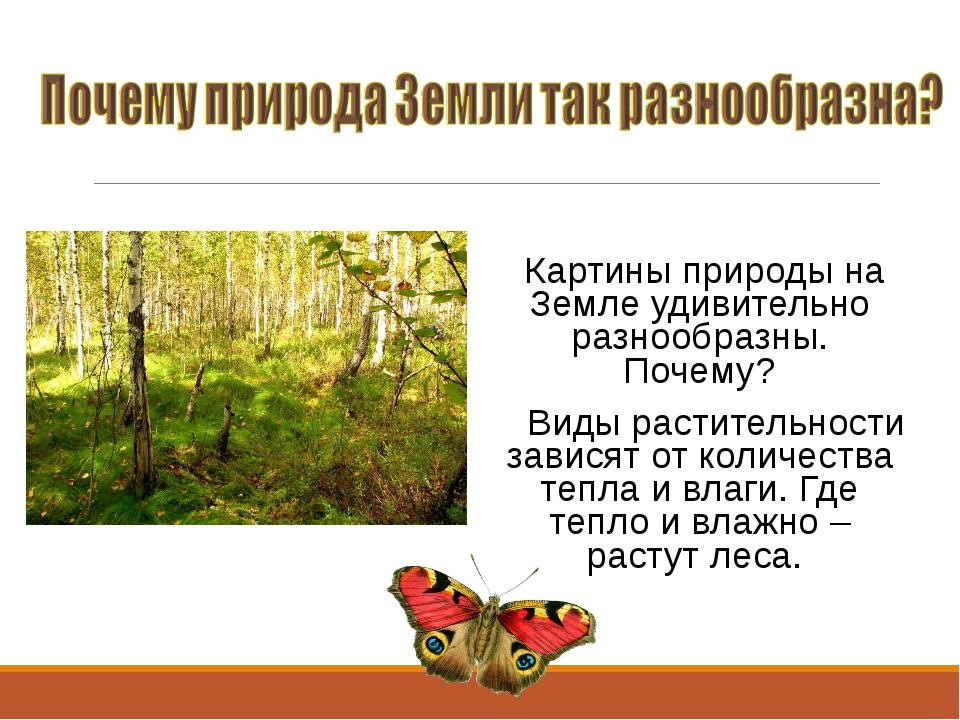 Картины природы на Земле удивительно разнообразны. Почему? Виды растительнос...