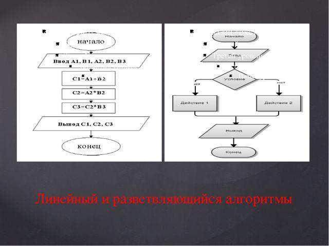 Линейный и разветвляющийся алгоритмы