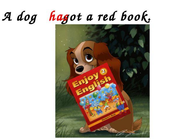 A dog got a red book. has