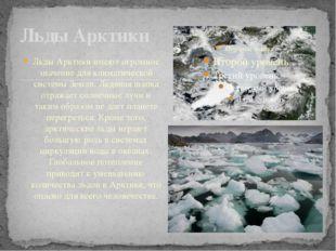 Льды Арктики имеют огромное значение для климатической системы Земли. Ледяна