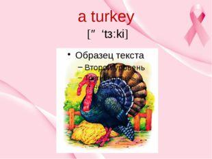 a turkey [ə 'tз:ki]