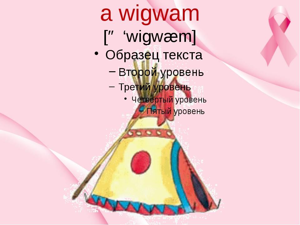 a wigwam [ə 'wigwæm]