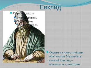 Евклид Одним из известнейших обитателем Музея был ученый Евклид –основатель