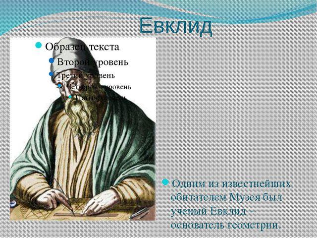Евклид Одним из известнейших обитателем Музея был ученый Евклид –основатель...