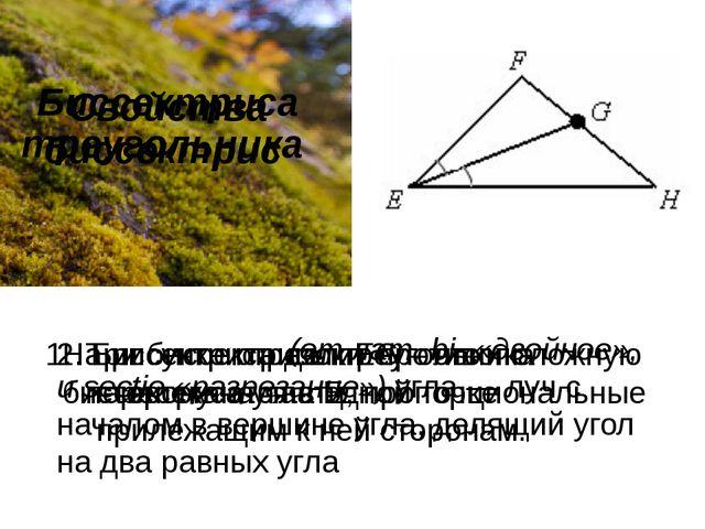 Биссектриса треугольника Биссектри́са(отлат.bi-«двойное», иsectio«разр...