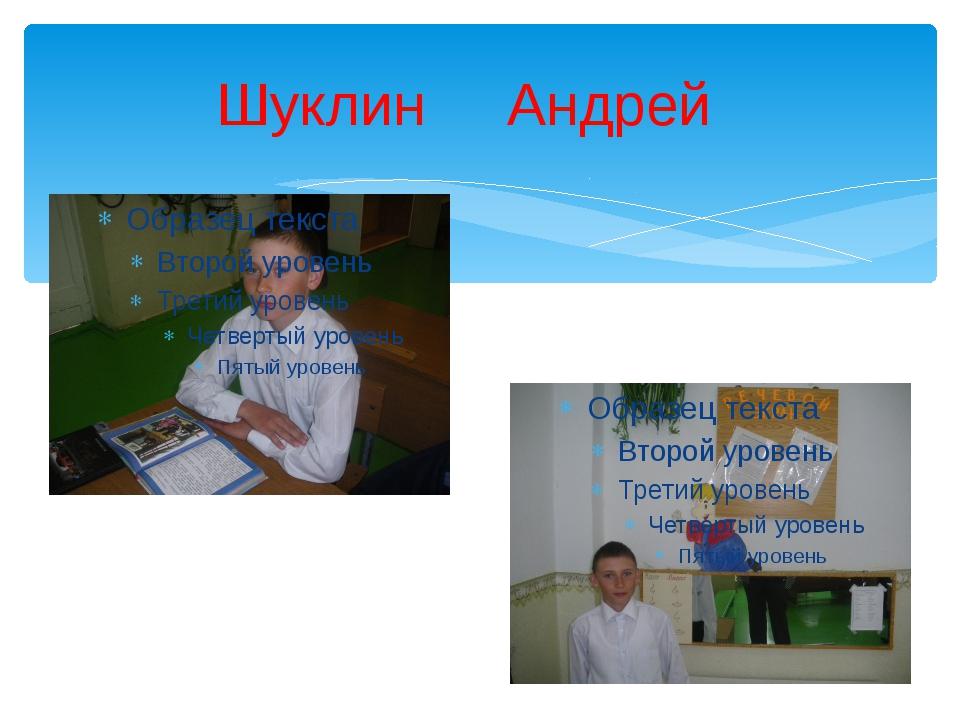 Шуклин Андрей