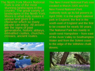 The North York Moors National Park is one of the most stunning landscapes in