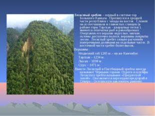 Лесистый хребет – первый в системе гор Большого Кавказа . Протянулся в средн