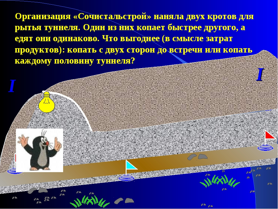 I I Организация «Сочистальстрой» наняла двух кротов для рытья туннеля. Один и...