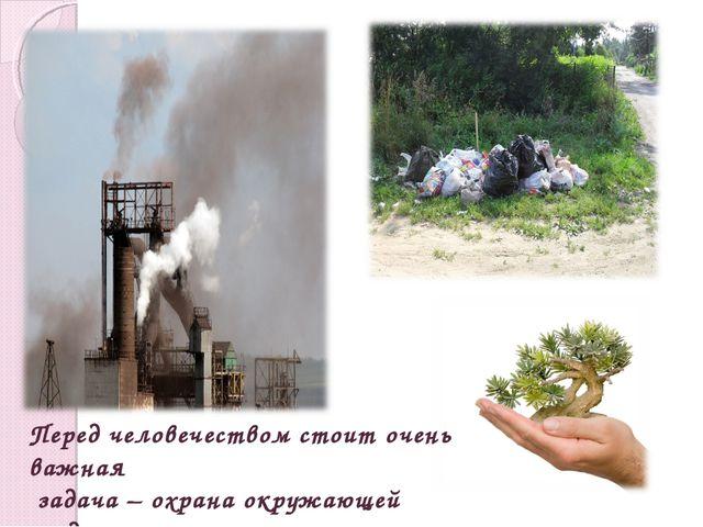 Перед человечеством стоит очень важная задача – охрана окружающей среды.