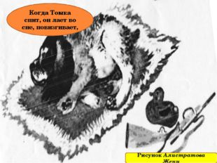Когда Томка спит, он лает во сне, повизгивает, Рисунок Алистратова Жени