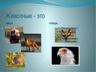 Животные - это звери птицы