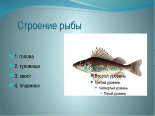 Строение рыбы 1. голова 2. туловище 3. хвост 4. плавники