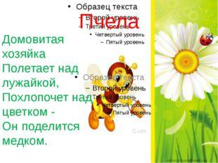 Пчела Домовитая хозяйка Полетает над лужайкой, Похлопочет над цветком - Он по