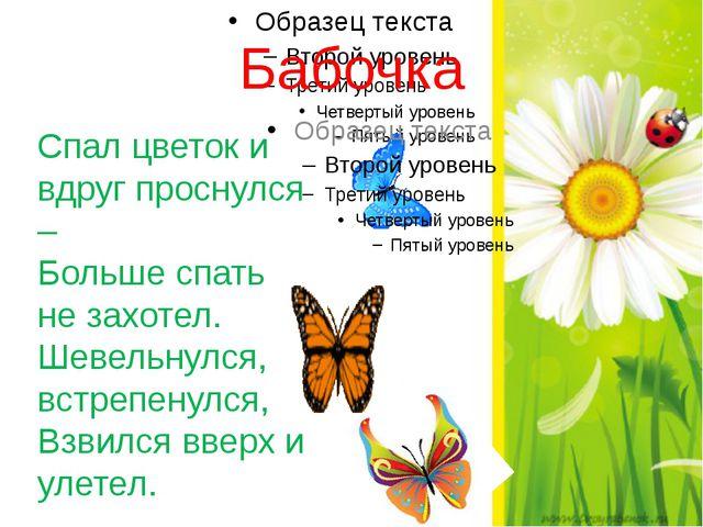 Бабочка Спал цветок и вдруг проснулся – Больше спать не захотел. Шевельнулся,...