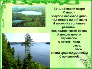 Есть в России озеро Сапшо - Голубое ласковое диво. Над водою синий шёлк И вес