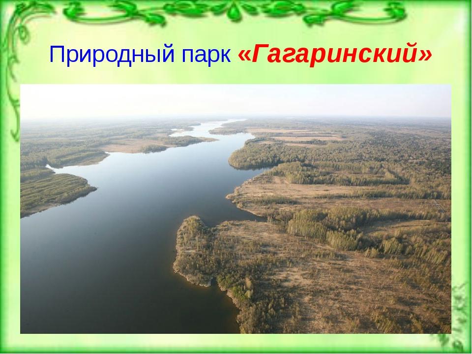 Природный парк «Гагаринский»