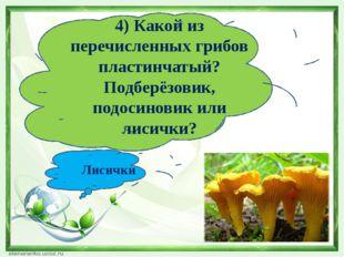 4) Какой из перечисленных грибов пластинчатый? Подберёзовик, подосиновик или